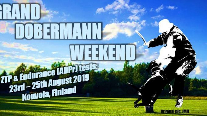 Grand Dobermann Weekend 2019!